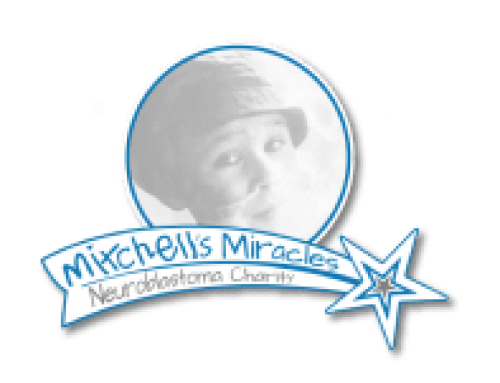 Charity Sky Dive for Mitchells Miracles